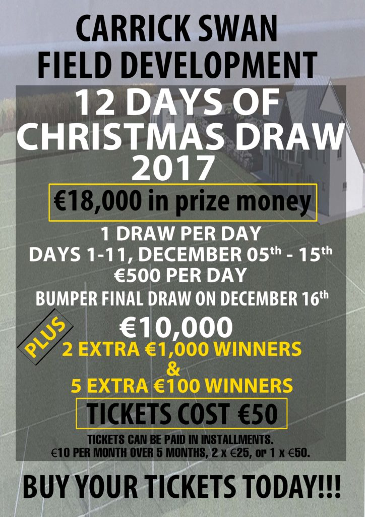 Carrick Swan Christmas Draw