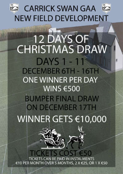 Swan 12 Days Of Christmas Draw