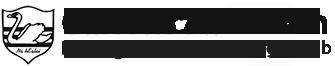 Carrick Swan Hurling, Football & Camogie Club