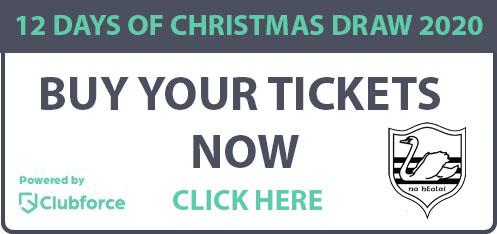 12 Days of Christmas Draw